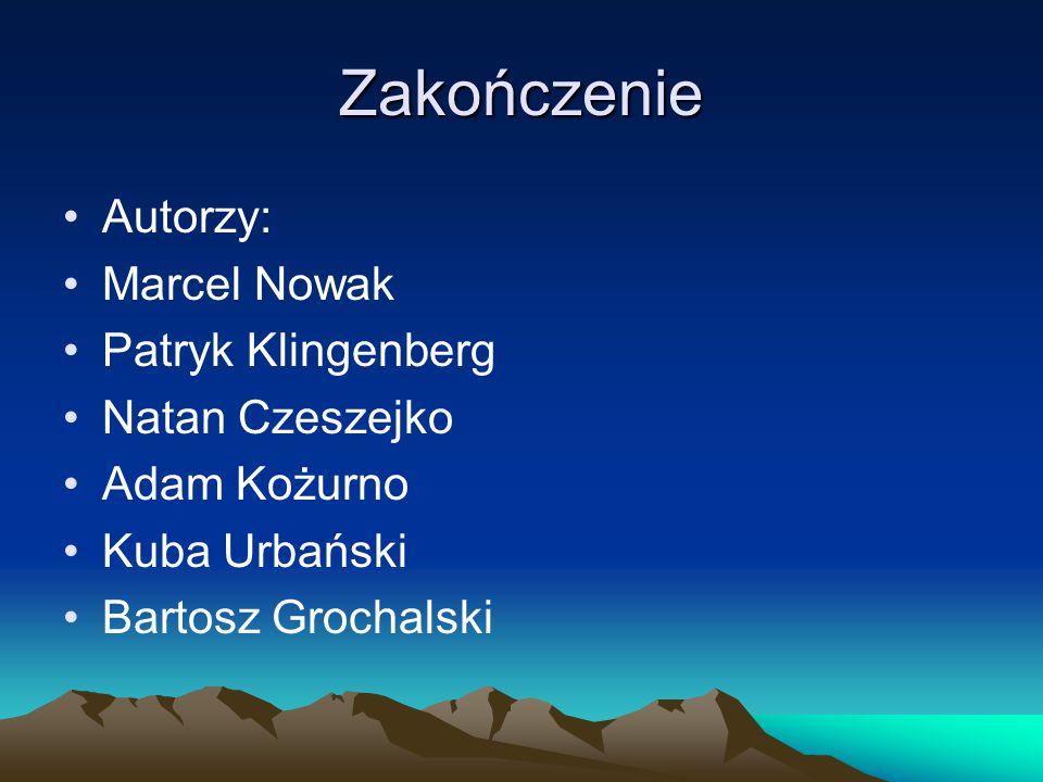 Zakończenie Autorzy: Marcel Nowak Patryk Klingenberg Natan Czeszejko Adam Kożurno Kuba Urbański Bartosz Grochalski