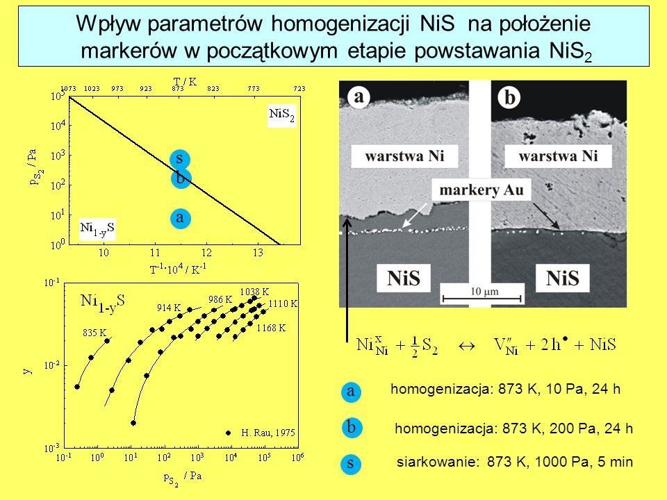 a b s homogenizacja: 873 K, 10 Pa, 24 h homogenizacja: 873 K, 200 Pa, 24 h siarkowanie: 873 K, 1000 Pa, 5 min b a s Wpływ parametrów homogenizacji NiS na położenie markerów w początkowym etapie powstawania NiS 2