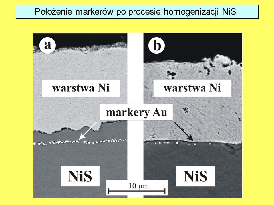 Położenie markerów po procesie homogenizacji NiS