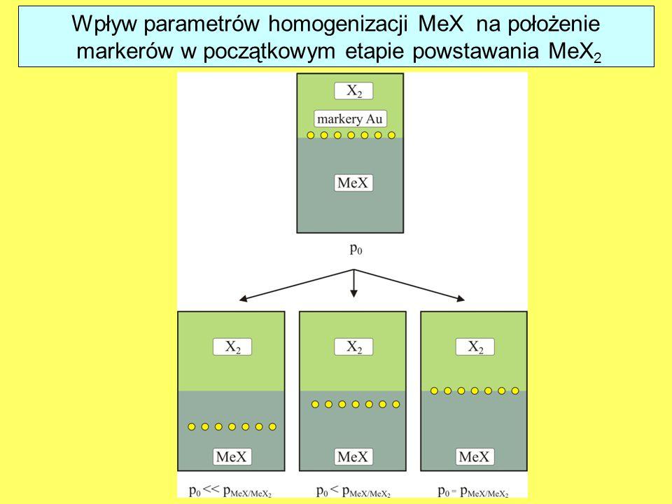 Wpływ parametrów homogenizacji MeX na położenie markerów w początkowym etapie powstawania MeX 2