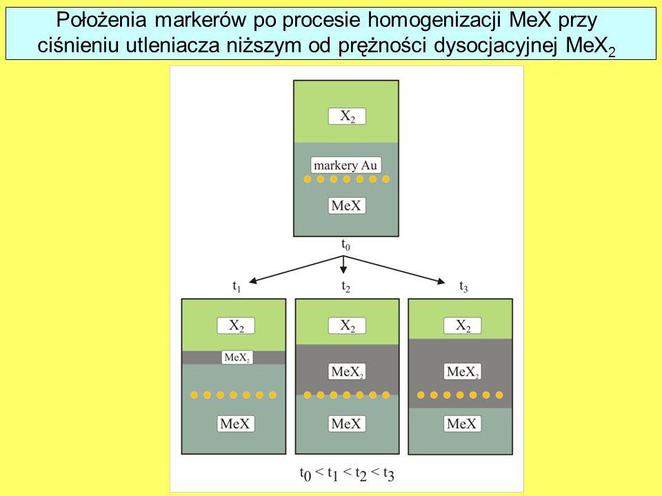 Results of marker experiments in the case of MeX homogenization under oxidant pressure lower than the MeX 2 dissociation pressure Położenia markerów po procesie homogenizacji MeX przy ciśnieniu utleniacza niższym od prężności dysocjacyjnej MeX 2