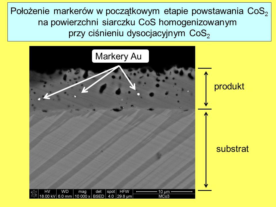 Położenie markerów w początkowym etapie powstawania CoS 2 na powierzchni siarczku CoS homogenizowanym przy ciśnieniu dysocjacyjnym CoS 2 substrat produkt Markery Au