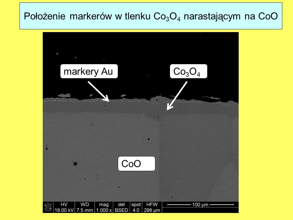 Położenie markerów w tlenku Co 3 O 4 narastającym na CoO Co 3 O 4 CoO markery Au