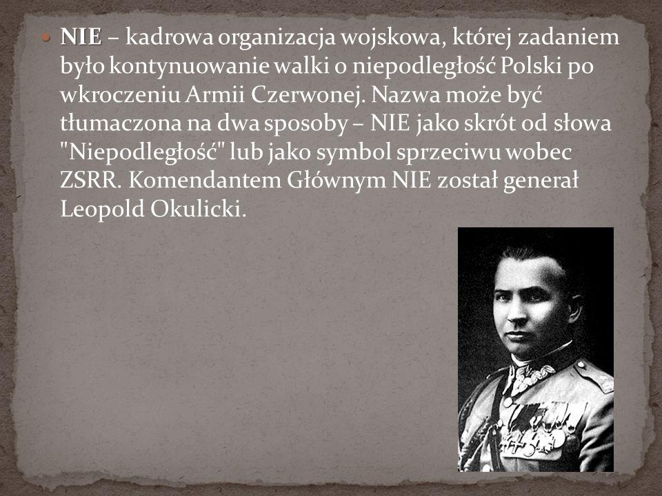 NIE NIE – kadrowa organizacja wojskowa, której zadaniem było kontynuowanie walki o niepodległość Polski po wkroczeniu Armii Czerwonej. Nazwa może być