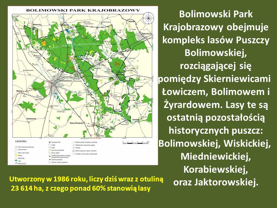 Bolimowski Park Krajobrazowy obejmuje kompleks lasów Puszczy Bolimowskiej, rozciągającej się pomiędzy Skierniewicami Łowiczem, Bolimowem i Żyrardowem.
