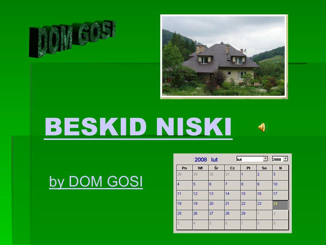 BESKID NISKI by DOM GOSI