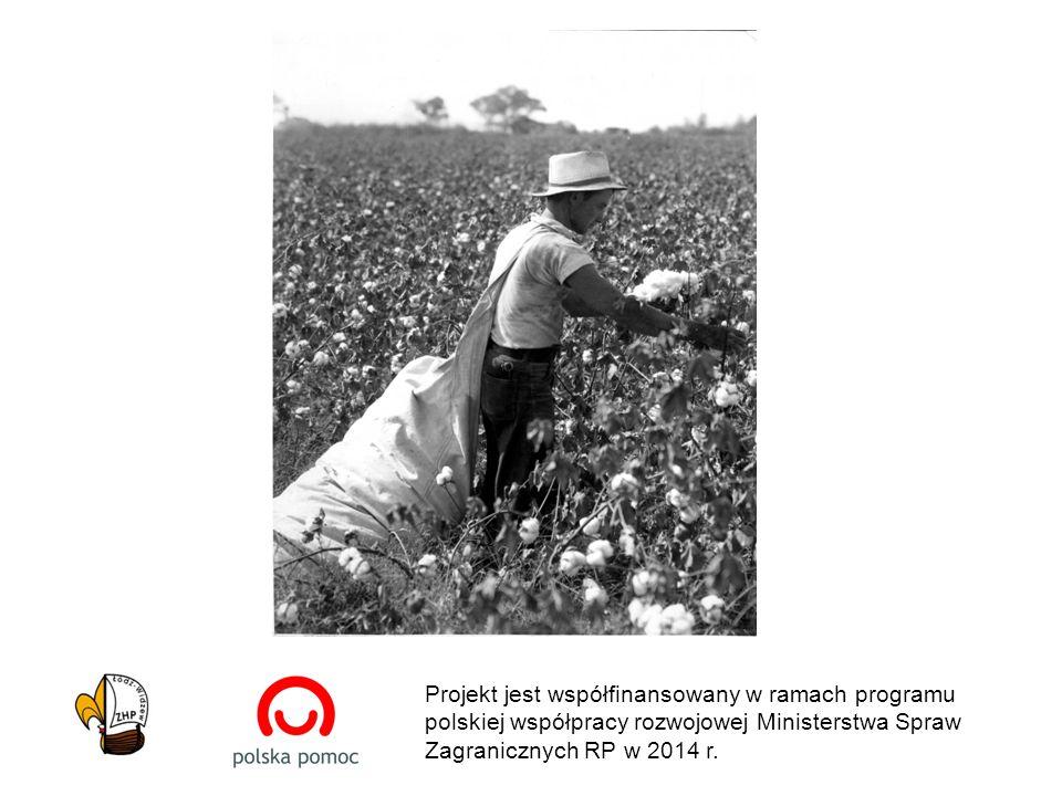 19.000 kilometrów z pola bawełny do konsumenta/ki 40.000 kilometrów = równik