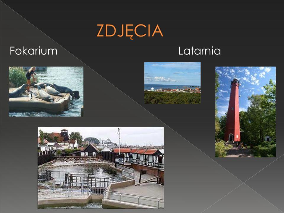  Fokarium Latarnia morska Jedno z Wysokość wieży 41m Najatrakcyjniejszych zasięg światła 33km miejsc na cyplu helskim. Gwarantowane W fokarium znajdu