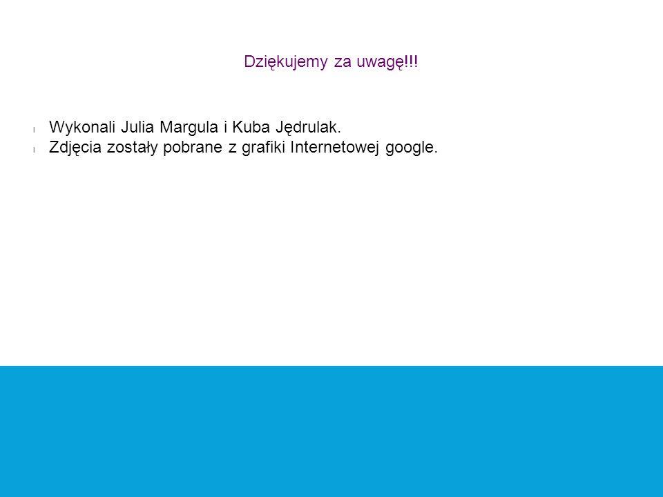 Dziękujemy za uwagę!!! l Wykonali Julia Margula i Kuba Jędrulak. l Zdjęcia zostały pobrane z grafiki Internetowej google.