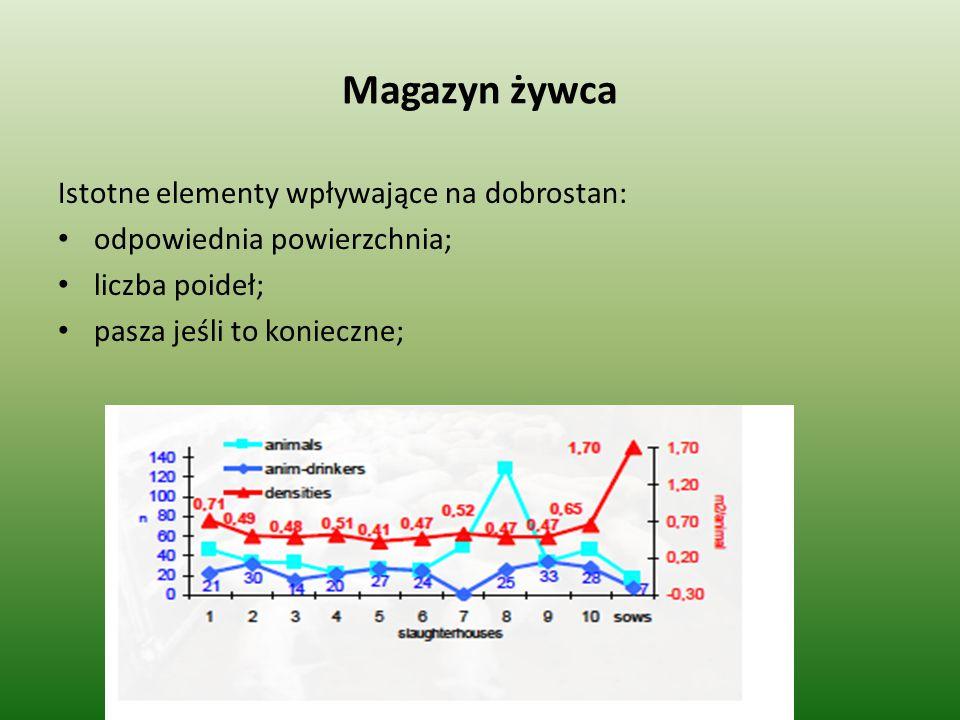 Magazyn żywca Istotne elementy wpływające na dobrostan: odpowiednia powierzchnia; liczba poideł; pasza jeśli to konieczne;