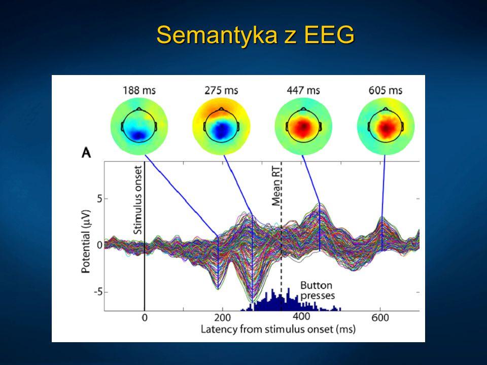 Semantyka z EEG