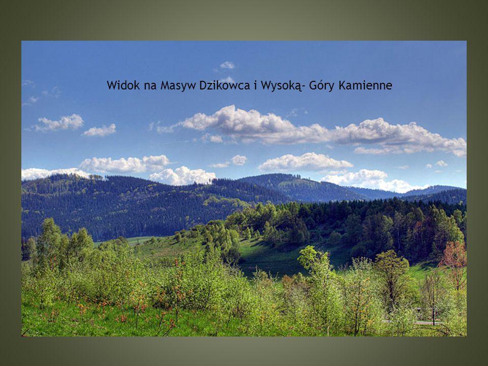 Widok na Masyw Dzikowca i Wysoką- Góry Kamienne