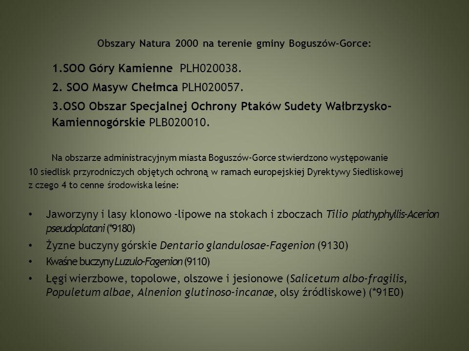 Obszary Natura 2000 na terenie gminy Boguszów-Gorce: 1.SOO Góry Kamienne PLH020038.