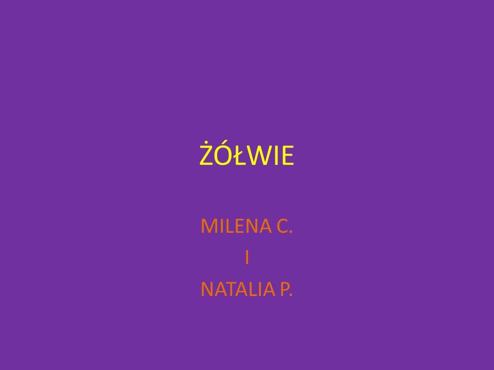 ŻÓŁWIE MILENA C. I NATALIA P.
