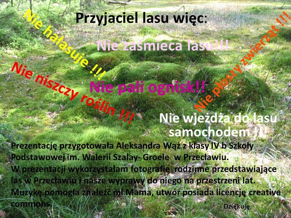 """Przyjaciel lasu chwali się swoim lasem By pokazać innym piękno mojego lasu wzięłam udział w konkursie fotograficznym """"Leśne spotkania z przyrodą"""". I z"""