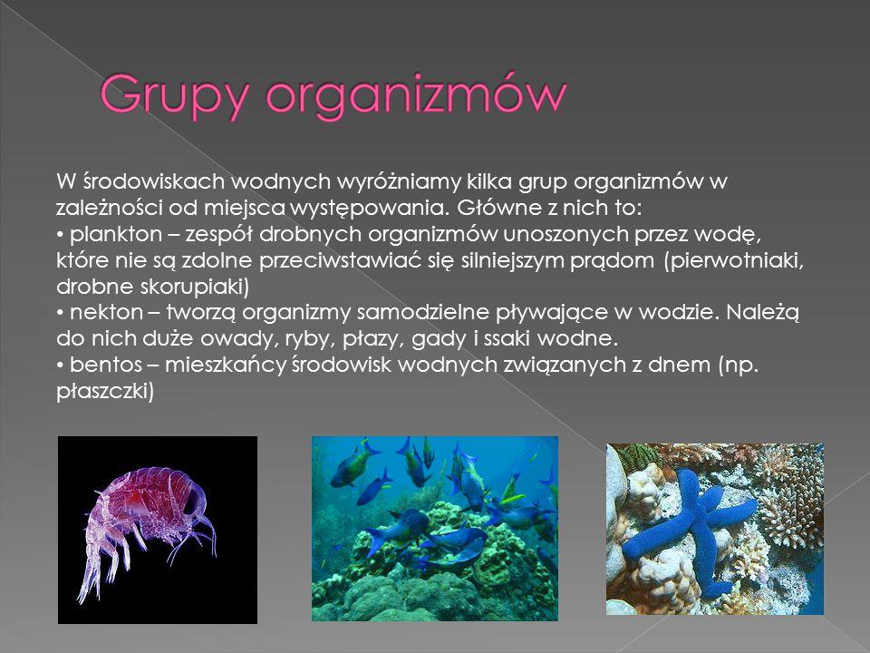 W środowiskach wodnych wyróżniamy kilka grup organizmów w zależności od miejsca występowania. Główne z nich to: plankton – zespół drobnych organizmów