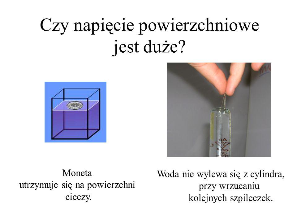 """Napięcie powierzchniowe Skutkiem oddziaływań międzycząsteczkowych w cieczy jest napięcie powierzchniowe. Prowadzi ono do powstania elastycznej """"błony"""""""