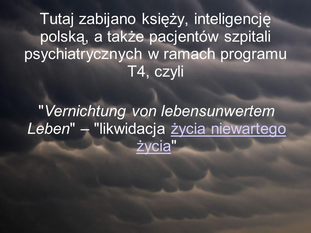 Tutaj zabijano księży, inteligencję polską, a także pacjentów szpitali psychiatrycznych w ramach programu T4, czyli Vernichtung von lebensunwertem Leben – likwidacja życia życia niewartego życiażycia