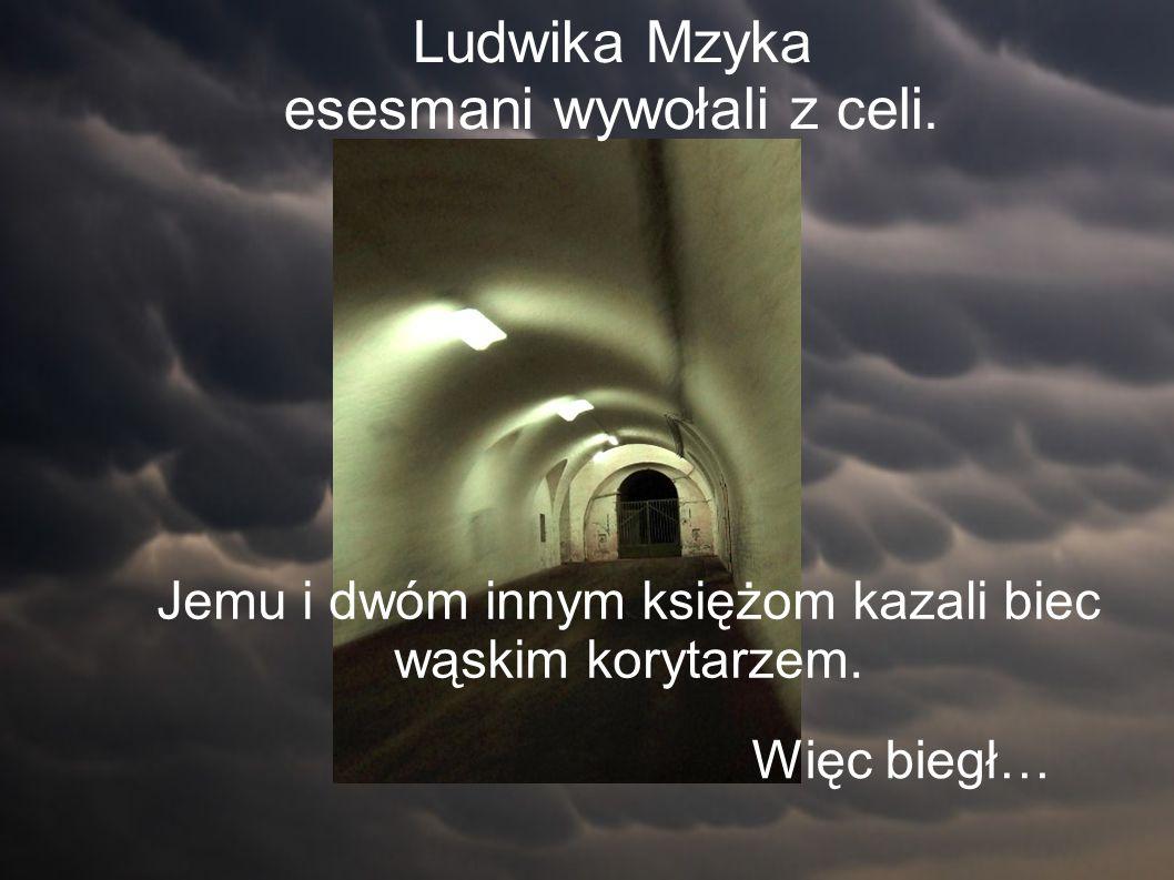 Ludwika Mzyka esesmani wywołali z celi. Jemu i dwóm innym księżom kazali biec wąskim korytarzem.