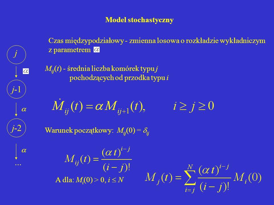Model stochastyczny Warunek początkowy: M ij (0) =  ij A dla: M i (0) > 0, i  N j j-1 j-2...