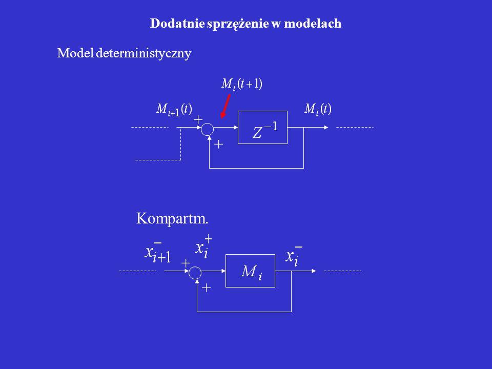 Dodatnie sprzężenie w modelach + + + + Kompartm. Model deterministyczny
