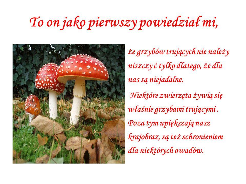To on jako pierwszy powiedział mi, że grzybów trujących nie należy niszczy ć tylko dlatego, że dla nas są niejadalne.