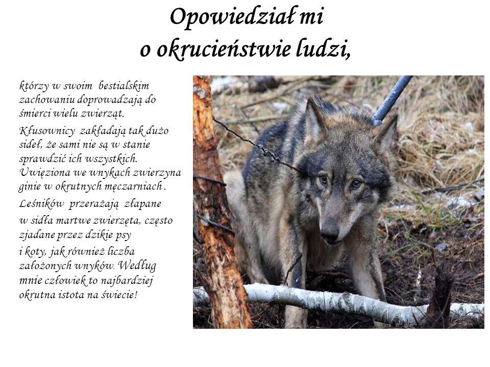 Opowiedział mi o okrucieństwie ludzi, którzy w swoim bestialskim zachowaniu doprowadzają do śmierci wielu zwierząt.