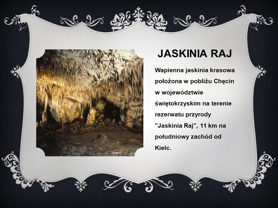 JASKINIA RAJ Wapienna jaskinia krasowa położona w pobliżu Chęcin w województwie świętokrzyskim na terenie rezerwatu przyrody Jaskinia Raj , 11 km na południowy zachód od Kielc.