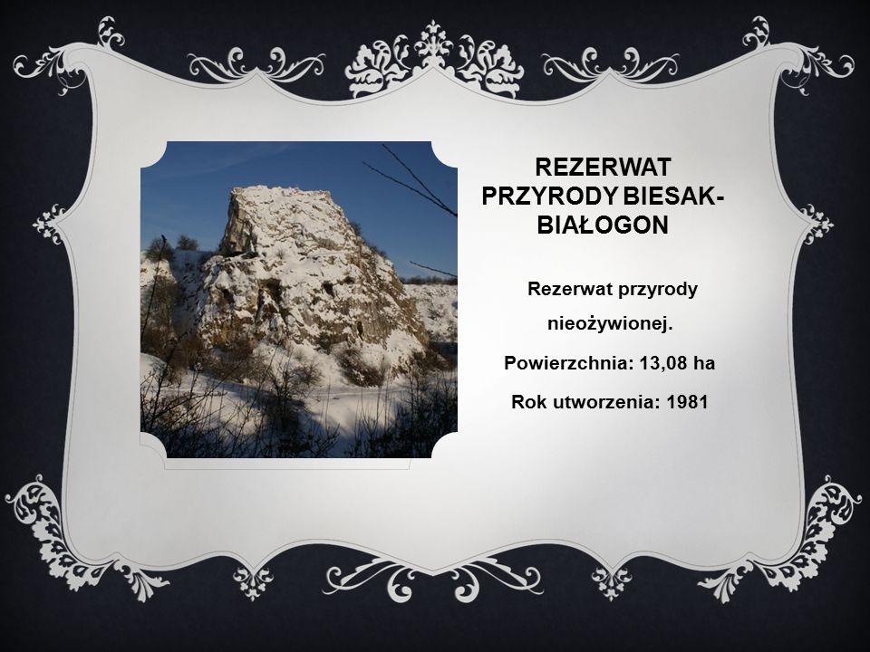 REZERWAT PRZYRODY BIESAK- BIAŁOGON Rezerwat przyrody nieożywionej.