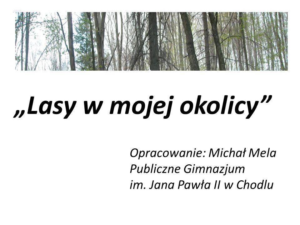 """""""Lasy w mojej okolicy"""" Opracowanie: Michał Mela Publiczne Gimnazjum im. Jana Pawła II w Chodlu"""