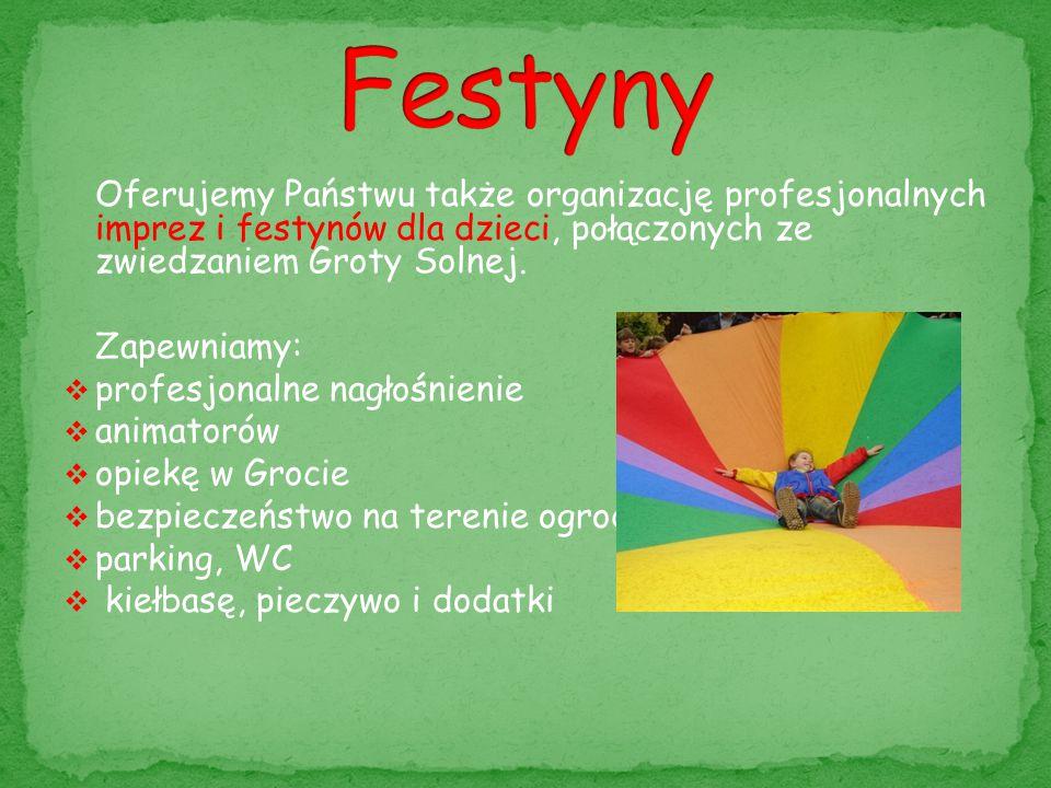 Oferujemy Państwu także organizację profesjonalnych imprez i festynów dla dzieci, połączonych ze zwiedzaniem Groty Solnej. Zapewniamy:  profesjonalne