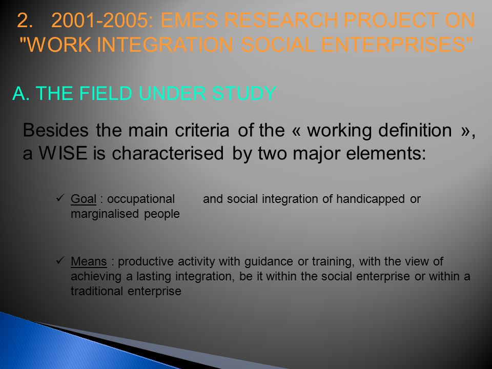 2. 2001-2005: EMES RESEARCH PROJECT ON