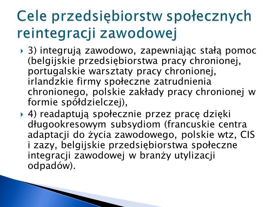  3) integrują zawodowo, zapewniając stałą pomoc (belgijskie przedsiębiorstwa pracy chronionej, portugalskie warsztaty pracy chronionej, irlandzkie firmy społeczne zatrudnienia chronionego, polskie zakłady pracy chronionej w formie spółdzielczej),  4) readaptują społecznie przez pracę dzięki długookresowym subsydiom (francuskie centra adaptacji do życia zawodowego, polskie wtz, CIS i zazy, belgijskie przedsiębiorstwa społeczne integracji zawodowej w branży utylizacji odpadów).