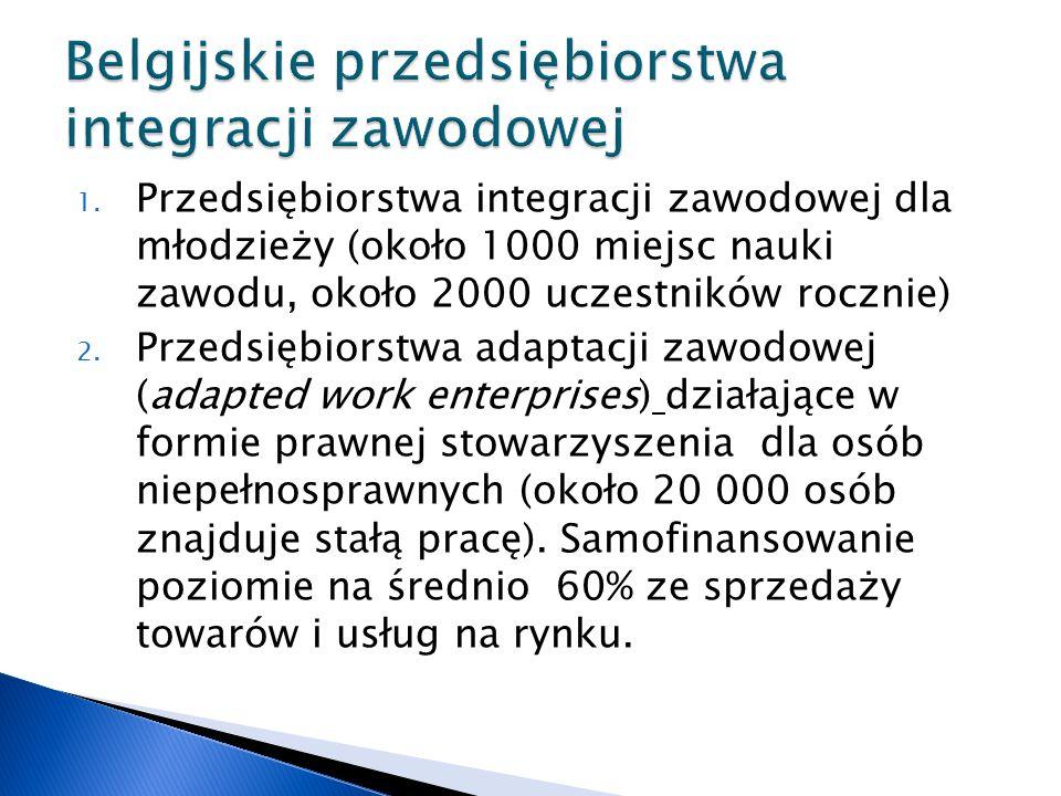 1. Przedsiębiorstwa integracji zawodowej dla młodzieży (około 1000 miejsc nauki zawodu, około 2000 uczestników rocznie) 2. Przedsiębiorstwa adaptacji