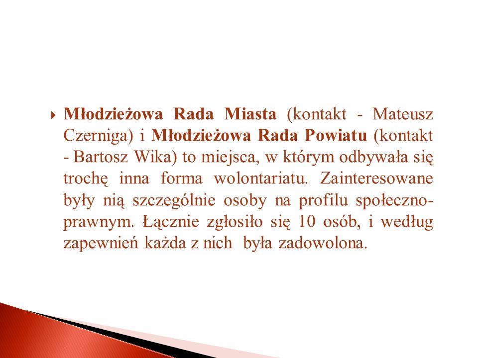  Młodzieżowa Rada Miasta (kontakt - Mateusz Czerniga) i Młodzieżowa Rada Powiatu (kontakt - Bartosz Wika) to miejsca, w którym odbywała się trochę inna forma wolontariatu.