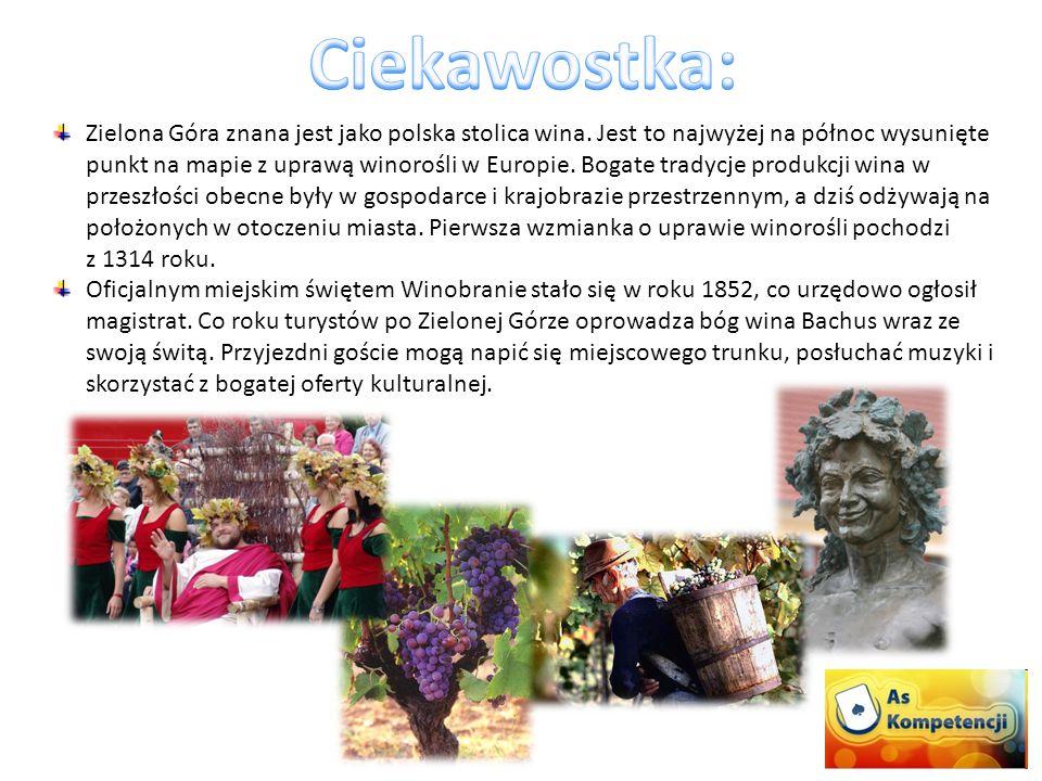 Zielona Góra znana jest jako polska stolica wina. Jest to najwyżej na północ wysunięte punkt na mapie z uprawą winorośli w Europie. Bogate tradycje pr