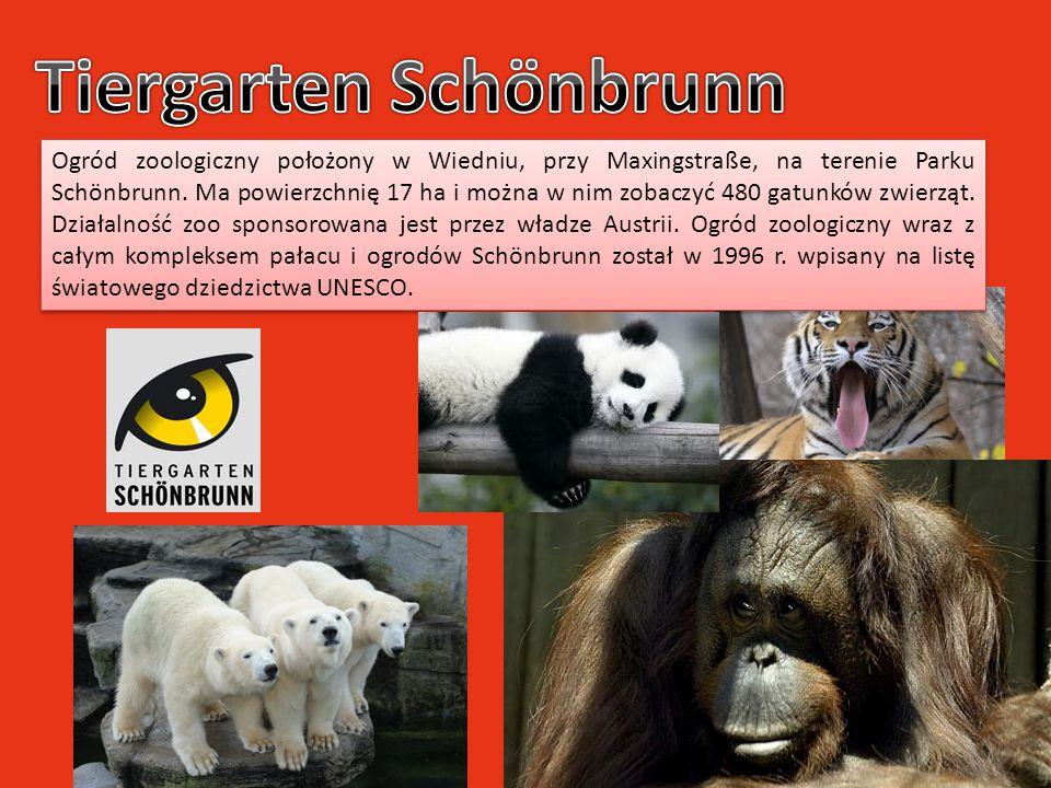 Ogród zoologiczny położony w Wiedniu, przy Maxingstraße, na terenie Parku Schönbrunn. Ma powierzchnię 17 ha i można w nim zobaczyć 480 gatunków zwierz