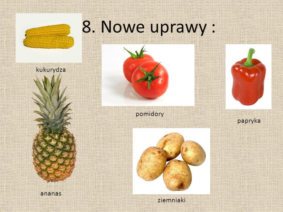 8. Nowe uprawy : kukurydza papryka pomidory ananas ziemniaki