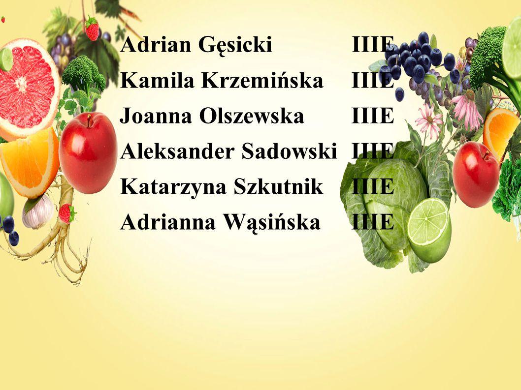 Adrian Gęsicki IIIE Kamila Krzemińska IIIE Joanna OlszewskaIIIE Aleksander SadowskiIIIE Katarzyna SzkutnikIIIE Adrianna WąsińskaIIIE