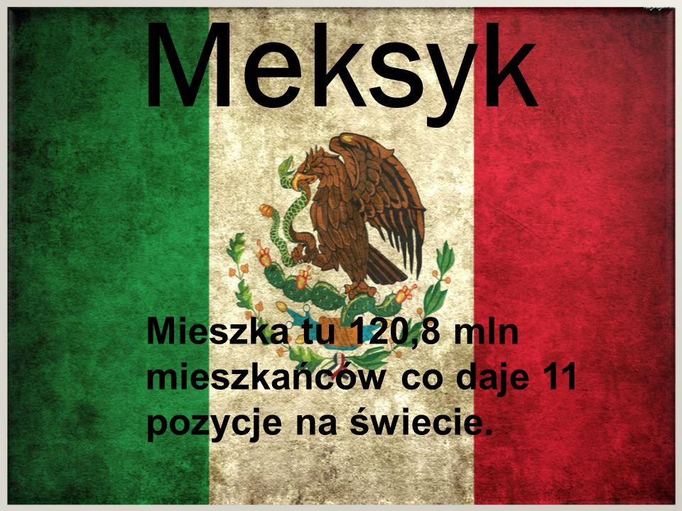 Mieszka tu 120,8 mln mieszkańców co daje 11 pozycje na świecie. Meksyk
