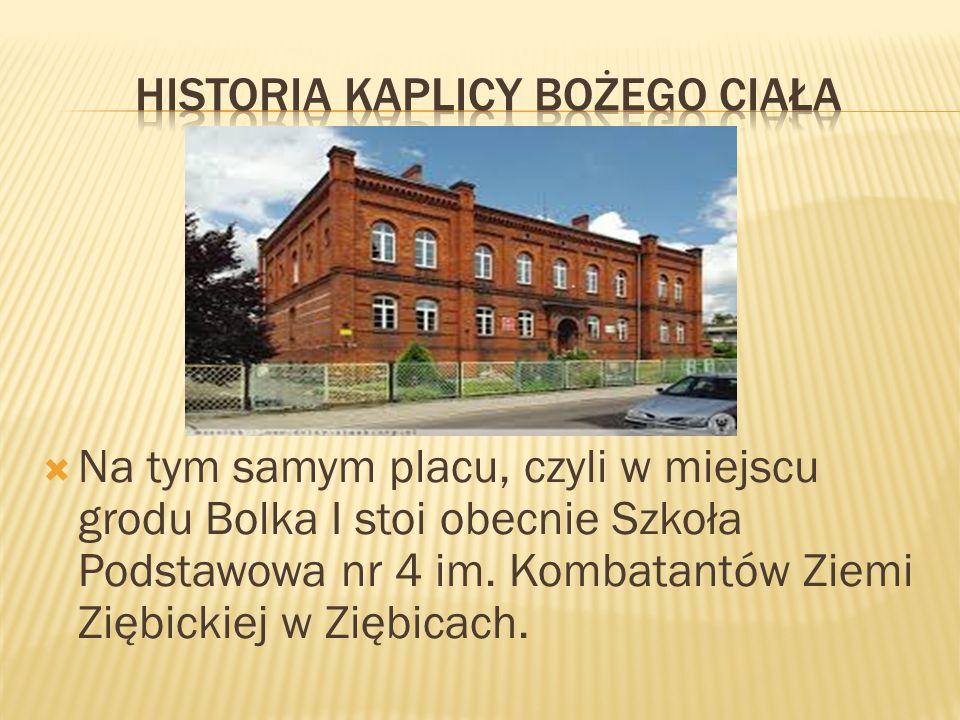  Na tym samym placu, czyli w miejscu grodu Bolka I stoi obecnie Szkoła Podstawowa nr 4 im. Kombatantów Ziemi Ziębickiej w Ziębicach.