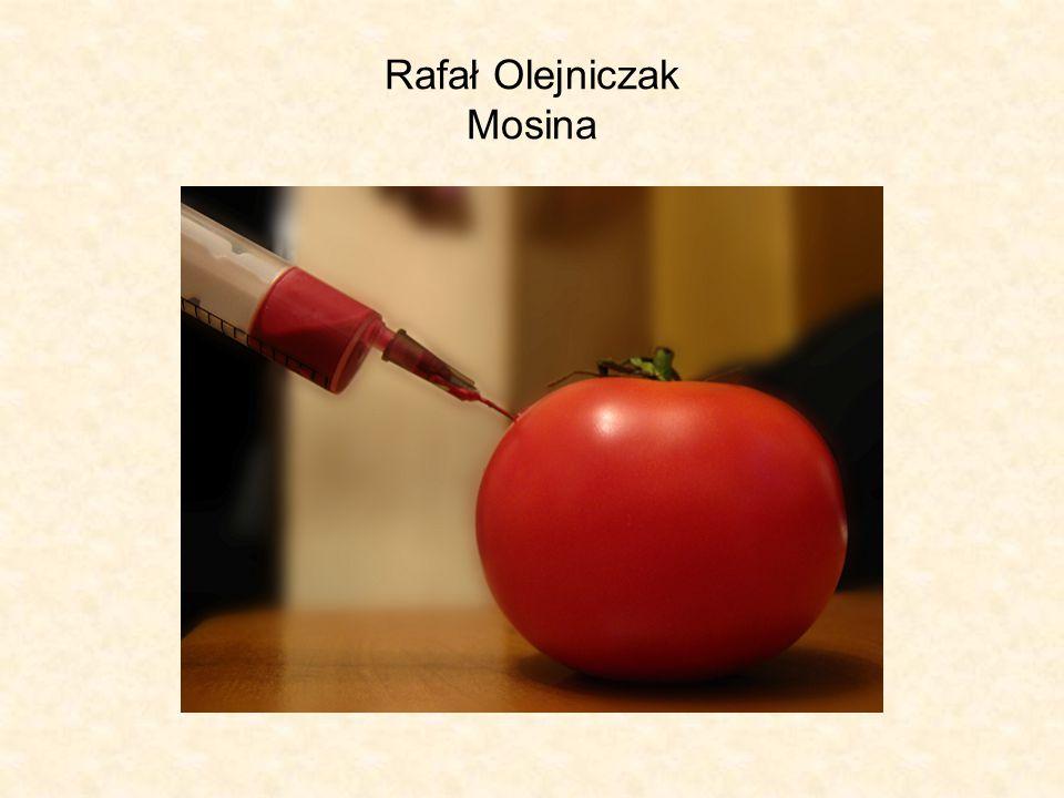 Rafał Olejniczak Mosina