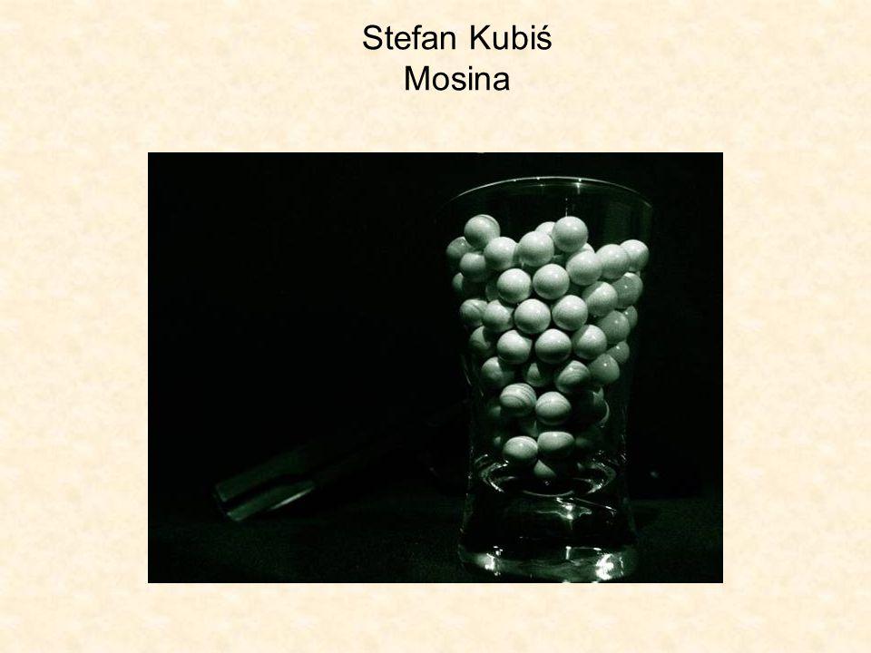 Stefan Kubiś Mosina