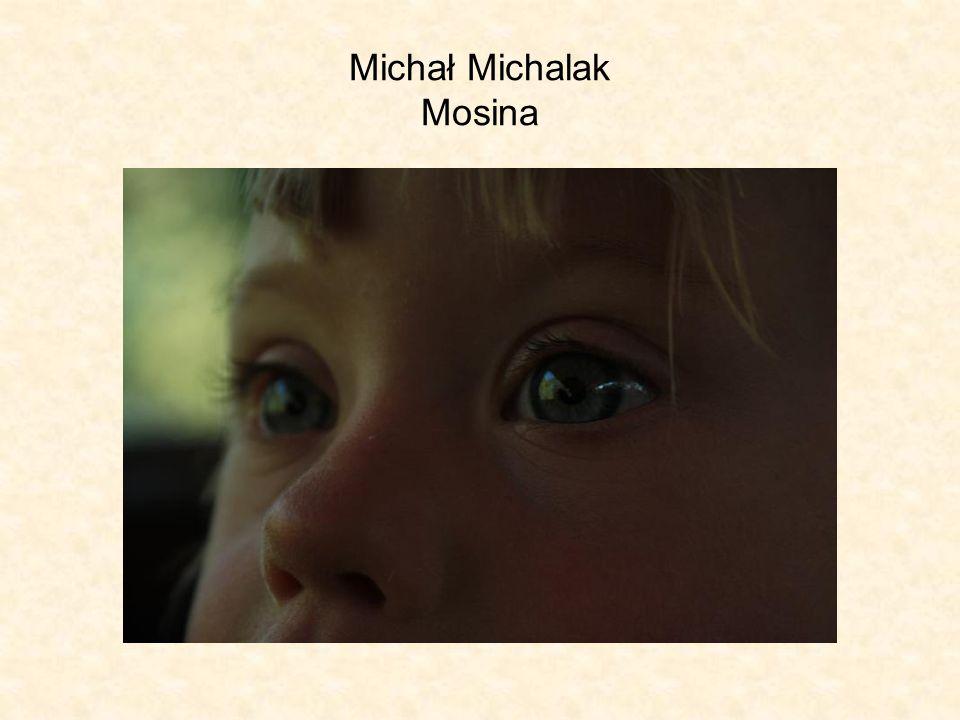 Michał Michalak Mosina