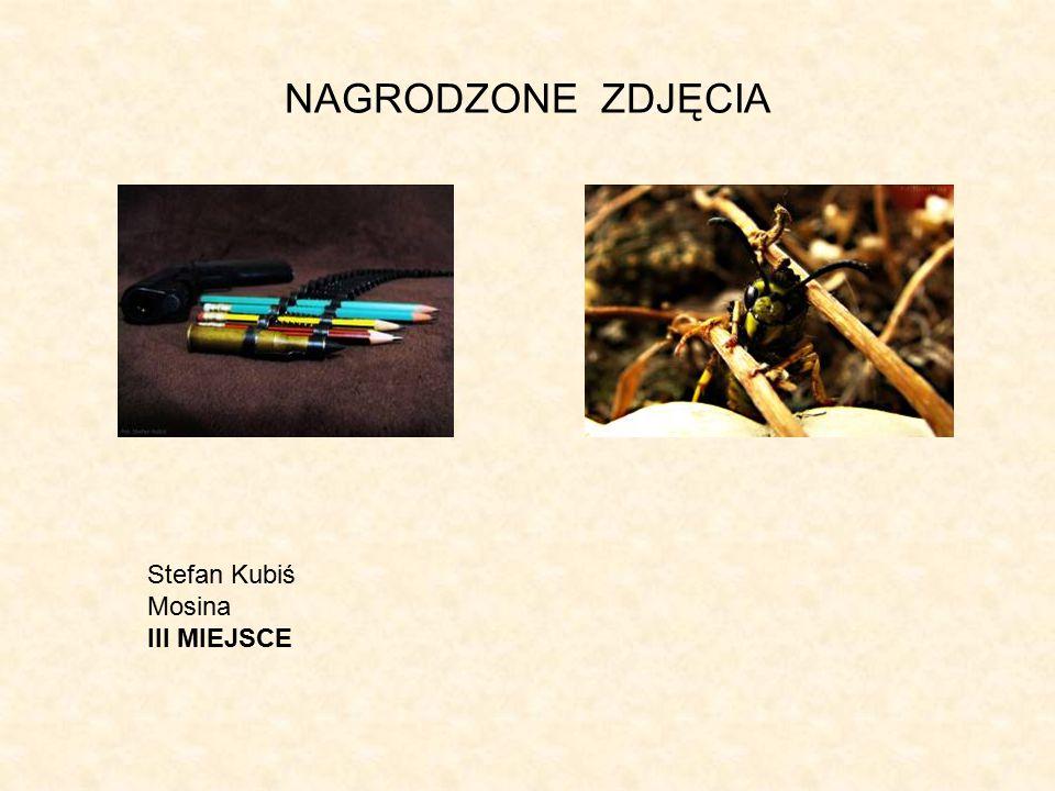 NAGRODZONE ZDJĘCIA Stefan Kubiś Mosina III MIEJSCE