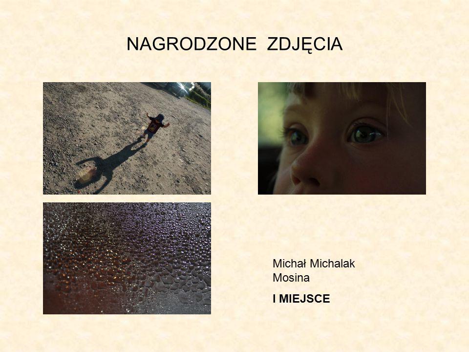 NAGRODZONE ZDJĘCIA Michał Michalak Mosina I MIEJSCE