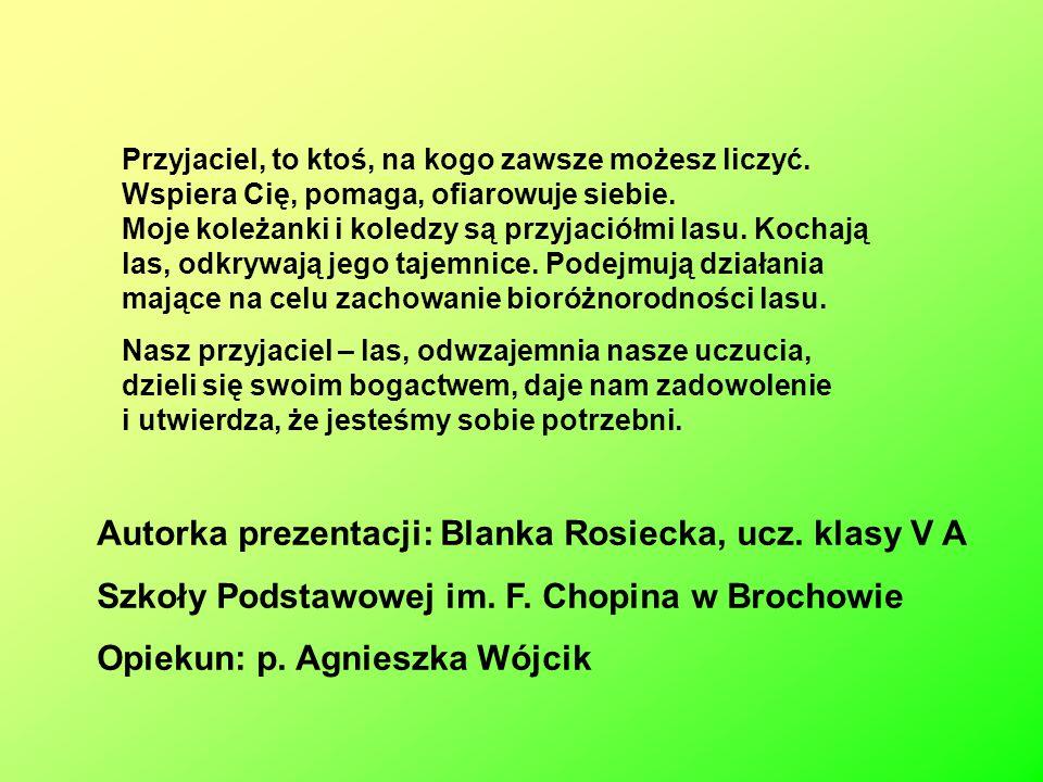 Autorka prezentacji: Blanka Rosiecka, ucz. klasy V A Szkoły Podstawowej im. F. Chopina w Brochowie Opiekun: p. Agnieszka Wójcik Przyjaciel, to ktoś, n