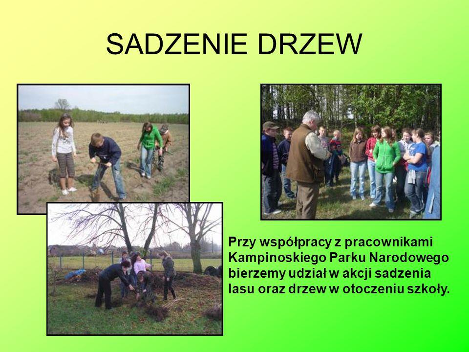 ZAJĘCIA EDUKACYJNE Wiedzę o lesie zdobywamy w ośrodkach edukacyjnych KPN.