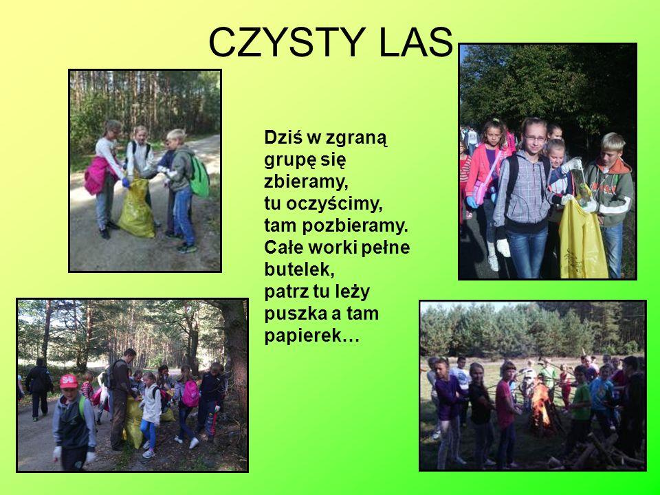 Autorka prezentacji: Blanka Rosiecka, ucz.klasy V A Szkoły Podstawowej im.