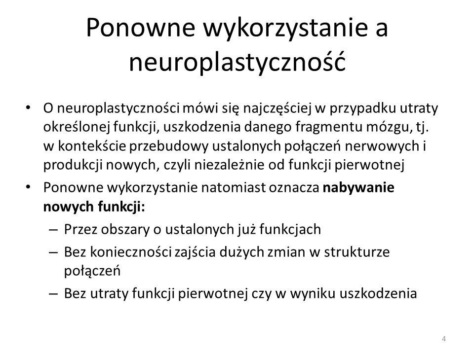 Ponowne wykorzystanie a neuroplastyczność O neuroplastyczności mówi się najczęściej w przypadku utraty określonej funkcji, uszkodzenia danego fragmentu mózgu, tj.